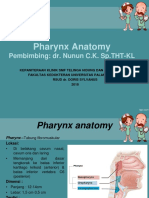 Anatomi Nasofaring