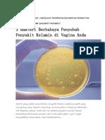 materi bakteri kelompok