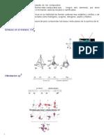 La Química Orgánica es el estudio de los compuestos.docx