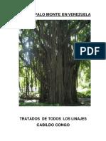 libro-de-palo-monte-vol-1-1.pdf