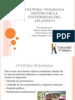 Cultura Ciudadana-proyecto Grupal