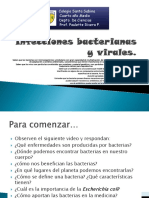 Bacterias Yvirus, 4to Medio