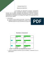 Actividad Virtual N 3 (1).pdf