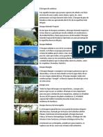 Bosques de Honduras