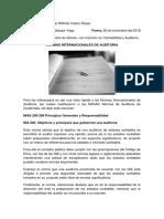 Normas Internacionales de Auditoria (Nias) Resumen