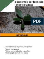 Dispersão Pr Formigas Não Especilizadas
