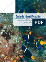 Datos Agrop. Guia de identificacion de peces.pdf