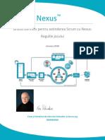 2018 Nexus Guide Romanian