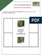 Nevoile de Baza Ale Animalelor