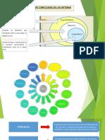 Presentación - Teoría General de Sistemas - Grupo 3