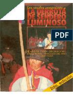 degregori_lasrondascampesinas.pdf