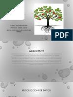 arbol causal vanesa.pptx