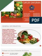 Sayur Sayuran New
