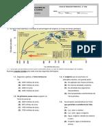 Ficha Formativa 1- 8º Ano