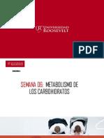 Clase 06 Carbohidratos Mdcpv