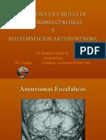 Aneurismas y MAV_Dr Hafon_umayor 2010