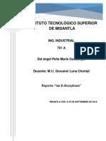 Reporte 8 diciplinas.docx