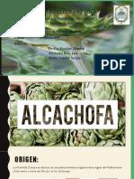 CULTIVO DE ALCACHOFA.pptx
