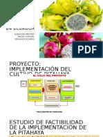 MANEJO-INTEGRADO-DEL-CULTIVO-DE-PITAHAYA-EN-ECUADOR.pptx