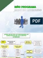 Diseño Programa Liderazgo (2)