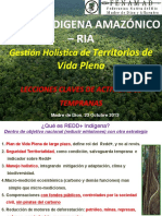 6._redd_indigena_amazonico_fenamad_2013