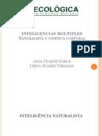 Inteligencia Naturalista y Cinetica Corporal