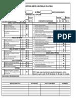 INSPECC ARNESES ALTURAS preseguridad.pdf