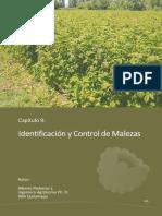 NR36504.pdf