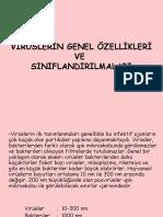 viroloji 2. SINIFLANDIRMA
