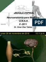 1. Medula Espinal
