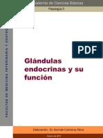 Función de Glándulas Endocrinas