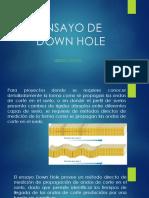 ENSAYO de Down Hole