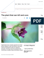 The Plant That Can Kill and Cure - BBC News