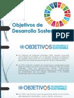Los objetivos de desarrollo de la onu
