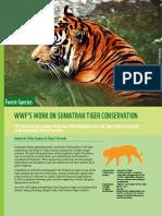 Wwf Work on Sumatran Tiger Conservation