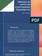 Métodos de Control de Enfermedades Fitopatógenos
