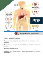 Clase Sistema Inmune