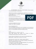 Anexo I Protocolo de Actuación Violencia