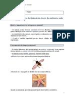 CN5_resumos_diversidadeanimais