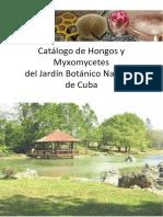 Catalogo de Hongos y Myxomycete - Milay Cabarroi-Hernandez