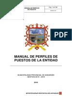 Manual de Perfiles de Puestos Angaraes (1)