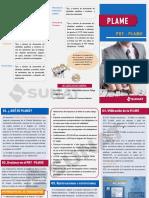 PDT - Plame