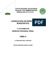 Derecho Procesal Penal Tema IV