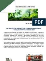 Gestión del Medio Ambiente 12.pptx