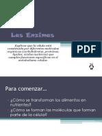 Las Enzimas 1ro m.ppt