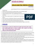 3desarrollo2011.pdf