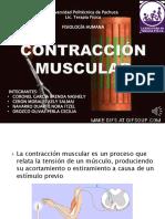 Contracción Muscular Equipo 6