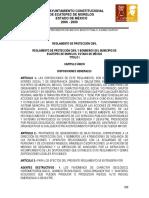 10REGLAMENTO DE PROTECCIÓN CIVIL .pdf
