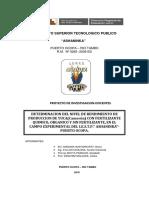 2.-Proy. Investigacion de Docentes -2018