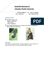 Butterfly Diversity of raipur university